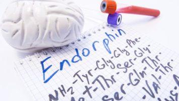 Endorfinová léčba a běhání